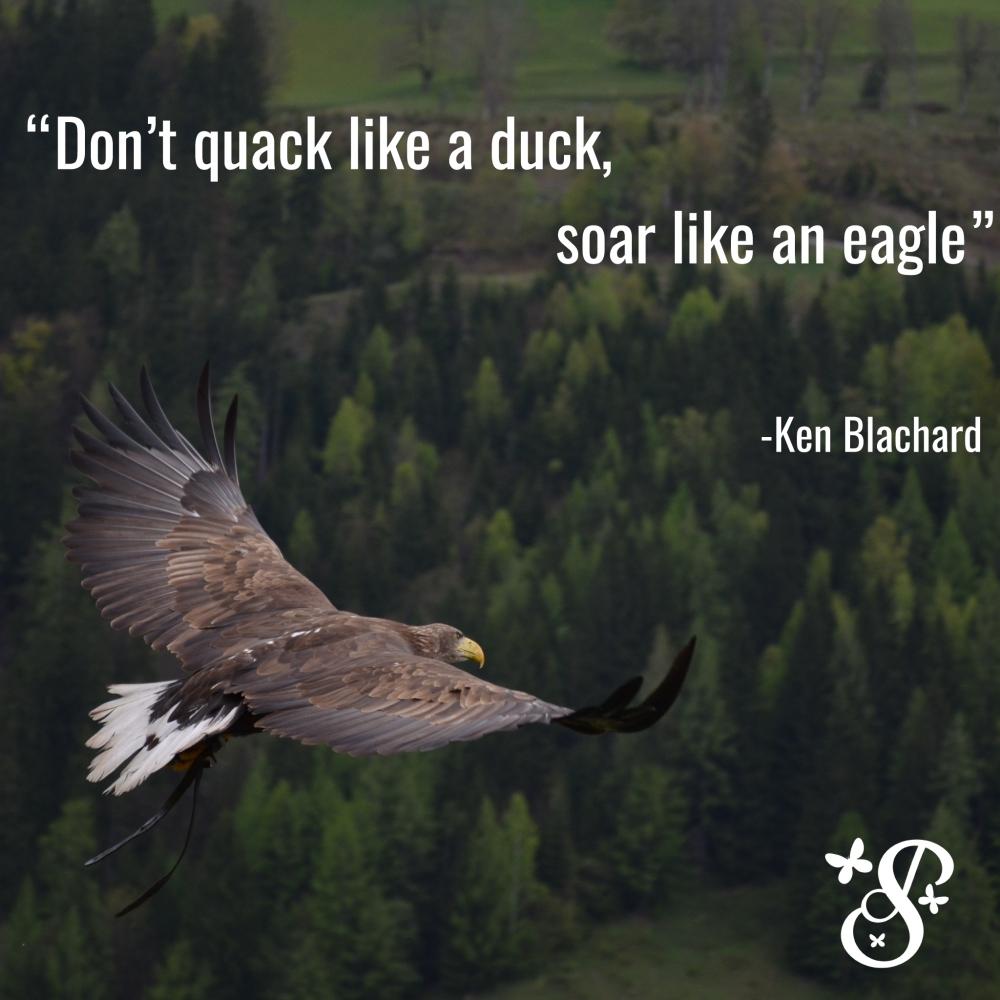 Soar-like-an-eagle
